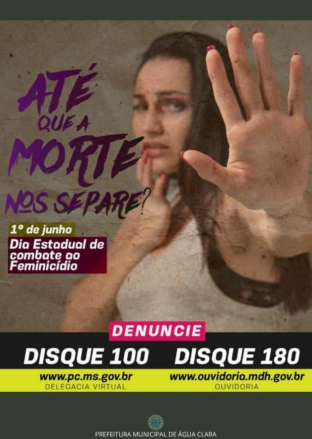 01 DE JUNHO  DIA ESTADUAL DE COMBATE AO FEMINICÍDIO